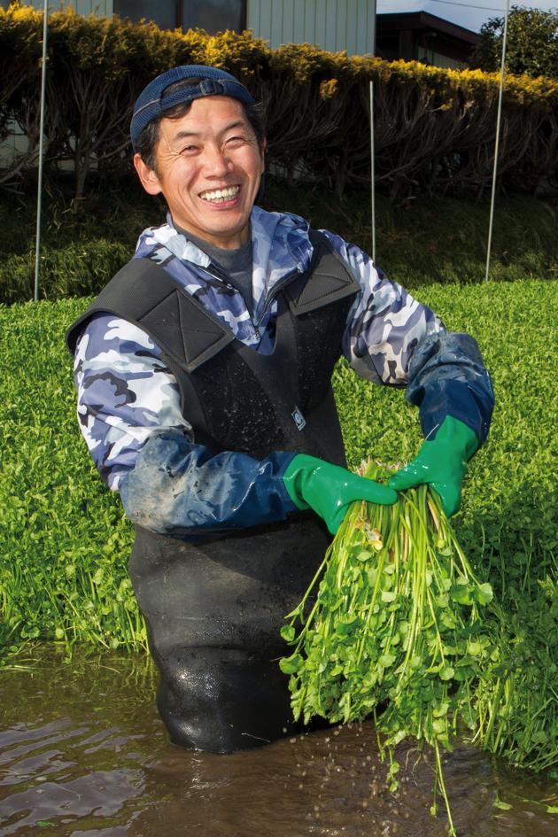 2. 一束ずつ丁寧に収穫していくので、なかなかの重労働。キラキラに輝く採れたての「仙台せり」と、大内さんの笑顔がまぶしい~
