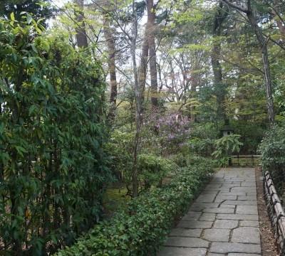 手入れの行き届いた小道が庭園へと続く
