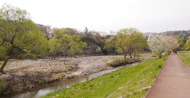 川岸まで降りて広瀬川の流れを身近に感じる