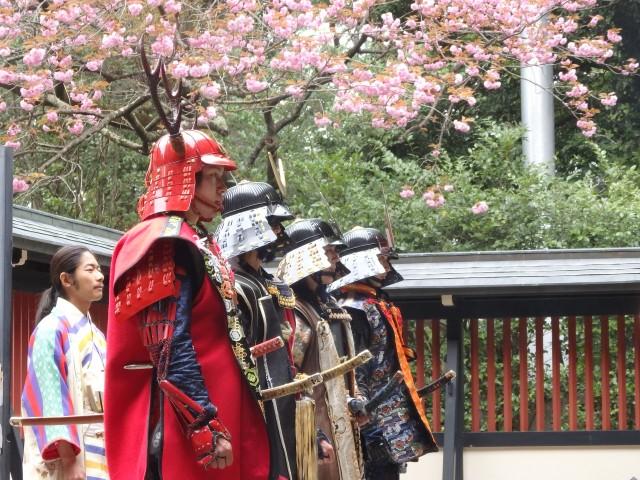 美しく咲く桜を背に気を引き締める