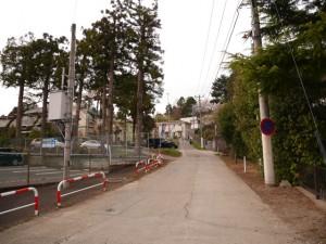参道の左横に、車道があるので今回は自転車でトライ。坂道でも電動がアシストしてくれるから大丈夫!