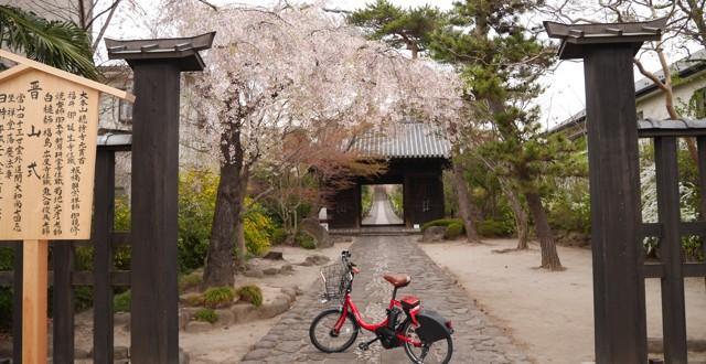 輪王寺参道前に自転車を置く