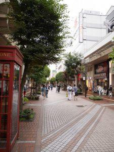 街路樹が美しいお洒落な街、7月の一番町四丁目商店街